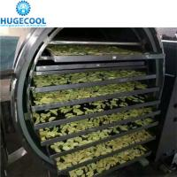 Quality Automatic Control Vacuum Freeze Drying Machine , Freeze Dried Food Dryer for sale