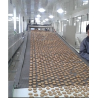 China Fuel Oil 28.5kw 50kg/H Vegetable Biscuit Production Line on sale