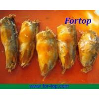 Quality 425g Canned Mackerel in Tomato Sauce for sale