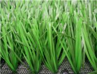 Quality Sports GrassFootball-WF-B-312000 for sale