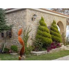 Quality Twist Leaf Sculpture Corten Steel Material For Yard Decor , OEM Or ODM Design for sale