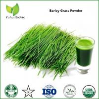 China Barley Grass Powder,organic barley grass powder,barley grass juice powder on sale