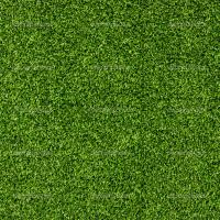 Quality Plastic grass for sale