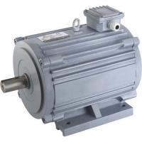 Quality Horizontal Electric Motor for sale