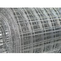Quality SS 304 Weld Mesh Fence Panels Anti Rust For Agriculture / Construction for sale