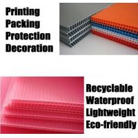 Quality PP Corrugated Plastic Board/PP Corrugated Plastic Sheet (QC3035)  for sale