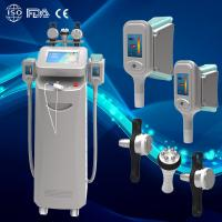China Best price buy cryolipolysis machine similar with american cool therapy device on sale