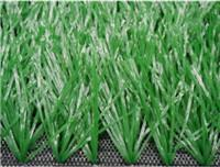 Quality Sports GrassFootball-WF-4 for sale