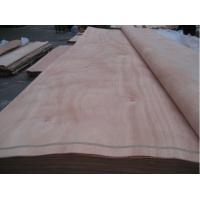 Natural wood veneer/ PLB veneer/ Gurjan veneer , Rotary cut natural wood veneer