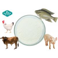 Quality 90% Protein Daily Nutritional Supplement Collagen Powder From Porcine Chicken Fish for sale