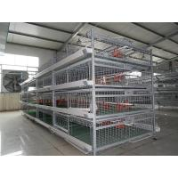 Quality Baby ChicKen Cage for sale