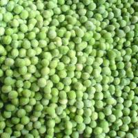 Quality frozen green peas for sale