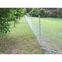 Star pickets are installed in garden with steel wires and chain link wire mesh.