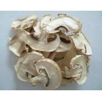 Quality dried Mushroom slices for sale