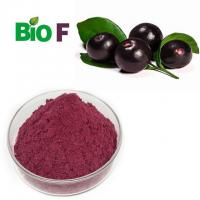 Quality Concentrate Fruit Extract Powder ,  Organic Acai Powder Powerful Antioxidant for sale