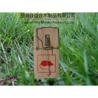 China wooden snap trap/mouse trap on sale
