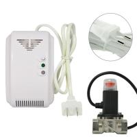 Quality CH4 Alarm Gas Detector , Handheld Gas Monitor With Gas Electromagnetic Valve for sale
