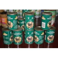 Quality Canned Mushrooms for sale