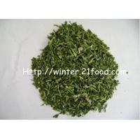 Quality coriander leave 001 for sale