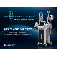 Quality 2019 New technology bearty equipment 3 cryo handles lipo cryotherapy for sale