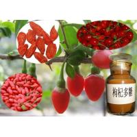 Quality Wholesale Goji Fruit Extract Powder for sale