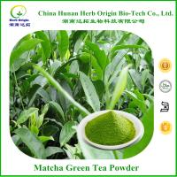 green tea extract weight loss yahoo
