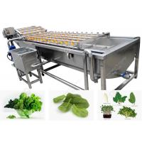 Buy cheap Bubble Type Vegetable Cleaning Washing Machine Vegetable Washing Solution from wholesalers