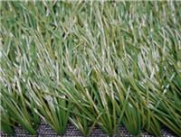 Quality Sports GrassFootball-WF-L10000 for sale