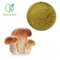 Quality GreenHerb Supply Natural Boletus Edulis Extract Polysaccharide 10%~50% for sale