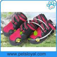 China China Manufacturer Pet Supply Product Luxury Summer Cool Pet Dog Shoes on sale