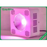 Custom Hydroponic Cob Led Grow Lights For Horticulture And Vegetables