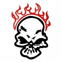 Quality car decal sticker for sale