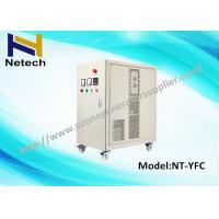 Quality Air Cooled Ozone Generator Water Purification For Cleaning Ozone cleanr Machine 30g for sale