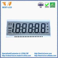 12 o'clock 3.0V Transflective 5.5 Digits 7 Segments LCD Display For Physician/Weighing /Industrial Electronic Scale
