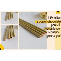 China Eco Friendly Factory Directly Sales Customized Logo Bamboo Straw With Brush 100 % Natural Bamboo Straw bagease bagpac on sale