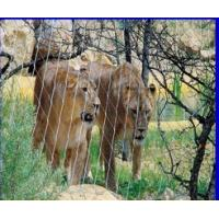 Stainless Steel X-Tend Mesh For Lion Mesh,Lion Fence Mesh,Lion Enclosure