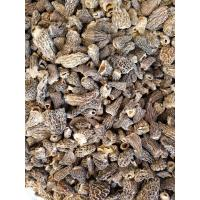 Quality Factory Price Premium Grade(1-3CM)Chinese Dried Morel Mushroom without full stem for sale