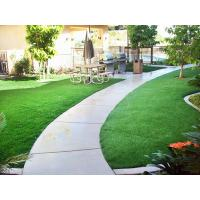 Quality Dogs artificial grass for sale