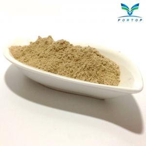 China Shiitake Mushroom Powder on sale