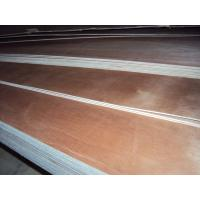 Quality okoume f/b,poplar core e1 glue plywood for sale