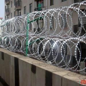 China Razor Wire Fence on sale