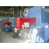 Quality Horizontal Hot Oil Fired Electric Thermal Oil Boiler With High Heat Efficient for sale