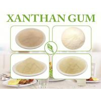 Quality High Purity Xanthan Gum Polymer 80 Mesh Powder Starch For Drink ISO Certificated for sale