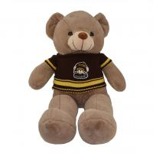 Quality Stuffed Animal Customized Cute Bear Plush Toy for sale