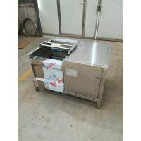 China Customized Industrial Washing Machines/Leafy Vegetable Washing machine on sale