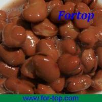 Quality Broad Bean Canned (CBB-003) for sale