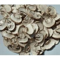 Quality Air Dried Mushroom Slices for sale