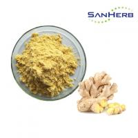 Quality Herbal Extract Natural Ginger Root Extract Powder Food Grade Anti Oxidant for sale