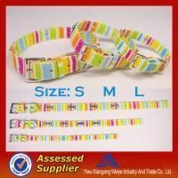 Quality Promotional item chromatic stripe dog collars and leashes with hight quality for sale