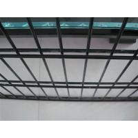 Quality 2D Double Mesh Fence Panel/Twin Wire Weld Mesh Fencing/8/6/8 wire mesh fence for sale